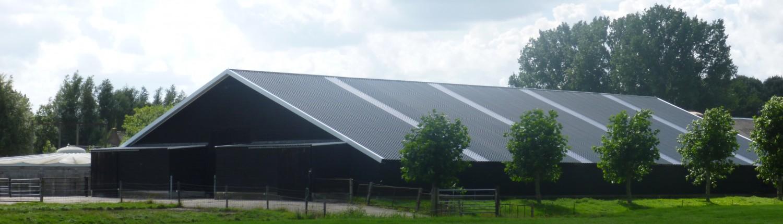 Roofplus bouw nieuw dak daken